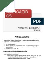 Proteinas.aminoacidos Nutricion Animal