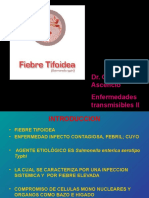 fiebre tifoidea.ppt