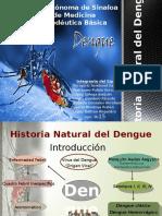 Historia natutral del  Dengue