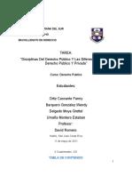 Disciplinas Derecho Publico y Diferencias Entre Derecho Publico y Privado - Derecho Publico