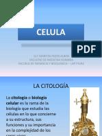 1 La Celula -Partes y Funciones