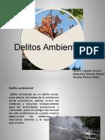 delitos delitos ambientales