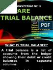 Prepare Trial Balance Presentation
