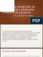 EscareñorRios_6B_Nivelesdeatención