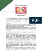 CASO_PRACTICO_N_02_DO.pdf