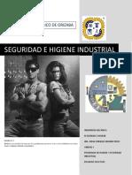 Unidad V Seguridad e Higiene.pdf