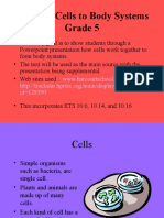 cell structure.ppt