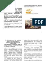 Division Social Del Trabajo CapitalistaA Desarrollo Curricular y Transicion Socialist A