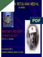 Luxarot.pdf