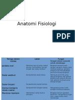 Anatomi Fisiologi