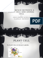 Difference Between a Plant Cell and Animal Cell