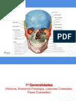 seminario osteopatía