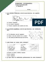 2º Básico prueba diagnostico intermedia
