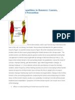Achilles Tendinopathies in Runners