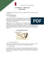 Hematologia - Hematopoese