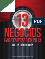 13+Negocios+2013.pdf