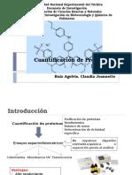 Cuantificación de Proteínas - Bradford