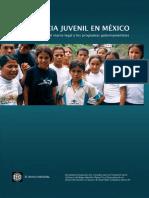 La violencia juvenil en México, reporte de la situación