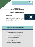 angiogenesisPhDprosignal11(2)