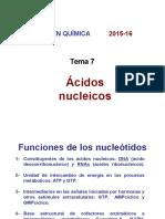 Tema 7 Ácidos Nucleicos