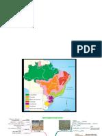 Domínios Morfoclimáticos - Brasil