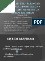 Organisasi Sel - Jaringan - Organ Paru-paru Dengan
