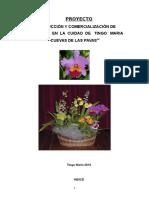 PROYECTO ORQUIDEAS.docx