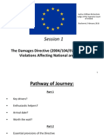 SP LIam McKechnie the Damages Directive on Antitrust Violations