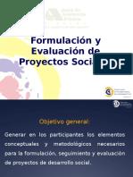 Formulacion y Evaluacion de Ps Jap 2011 (1)