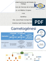 4_Gametogenesis
