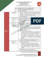 Estructura del Dictamen con Negativa NIA 705.pdf