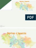 5 OBJETIVOS SEMINARIO.pdf
