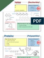 a biomolecule comparison information sheets