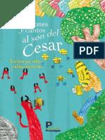 Narraciones Cesar