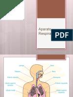 Patologías de via Respiratoria Inferior