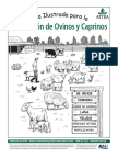 ovinos_ilustrada