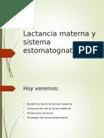 Lactancia Materna y Sistema Estomatognatico