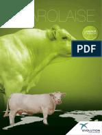 EVOLUTION International Catalogue 2016 Charolais En