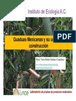 Bambúes Mexicanos Para La Construcción