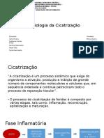 Fisiologia da Cicatrização.pptx