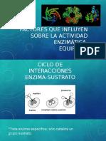 Factores-de-enzimas (1).pptx