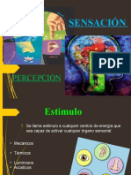 Exposición Sensación -Percepción Ad.