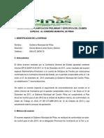 1 Formato Planificacion Preliminar y Especifica Piñas
