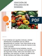 Proyecto de Hortalizas.
