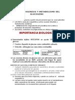 GLUCONEOGENESIS y Metabolismo Del Glucogeno 1