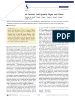 Preferential Binding of Peptides to Graphene Edges and Planes
