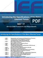 Overview_of_MEF17.ppt