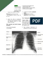 Radiologic-anatomy.doc