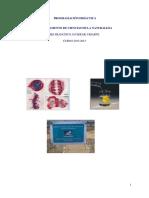ProgCCNN12-13.pdf
