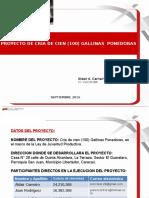 PROYECTO GALLINAS PONEDORAS [Reparado].pptx